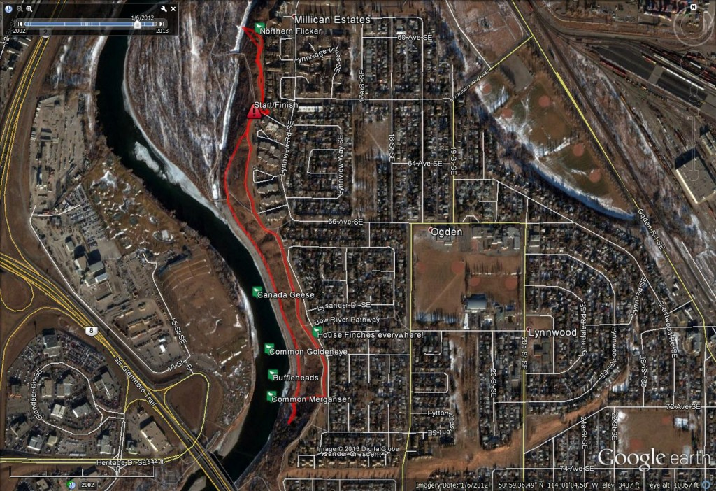 Beaverdam Flats - Part 1!