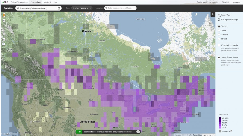 eBird map showing Snowy Owl sightings across the interior of Canada and the United States