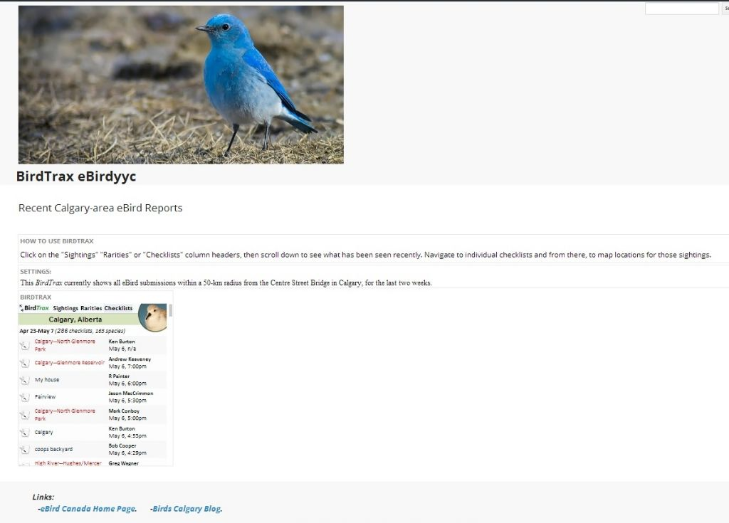 What's Being Seen in Calgary? - Birds Calgary