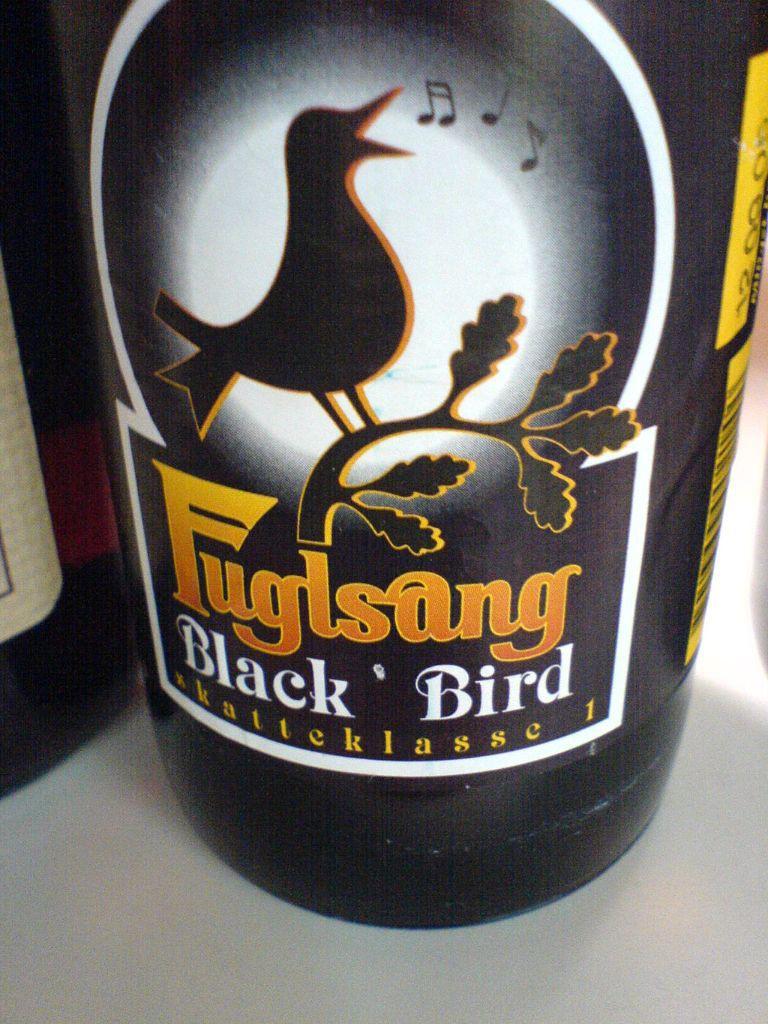 Fuglsang_Black_Bird